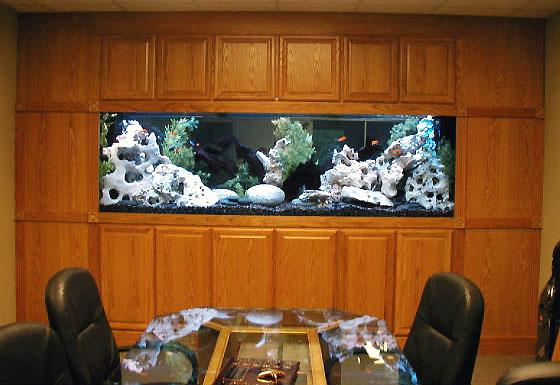Домашний аквариум симферополь вк
